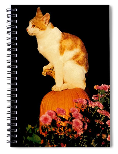 King Of The Pumpkin Spiral Notebook