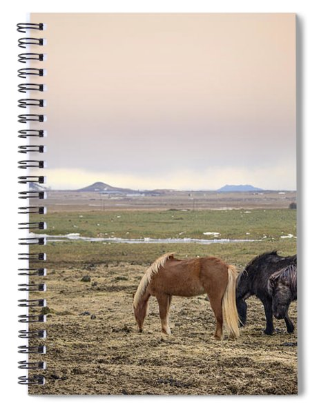 Kings Of The Nordic Twilight Spiral Notebook