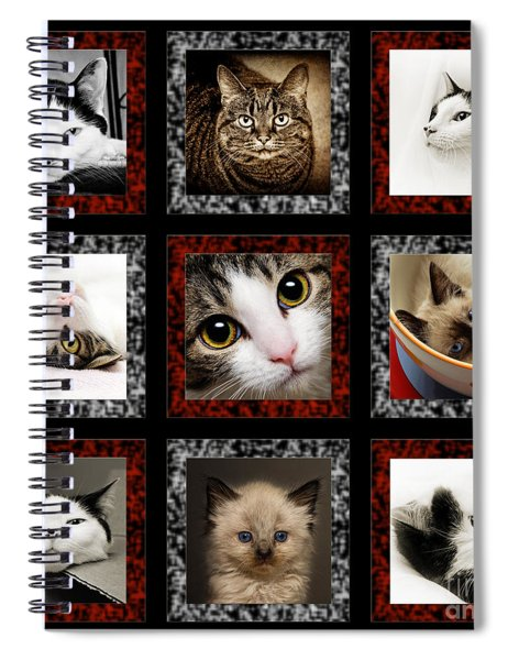 Kitty Cat Tic Tac Toe Spiral Notebook