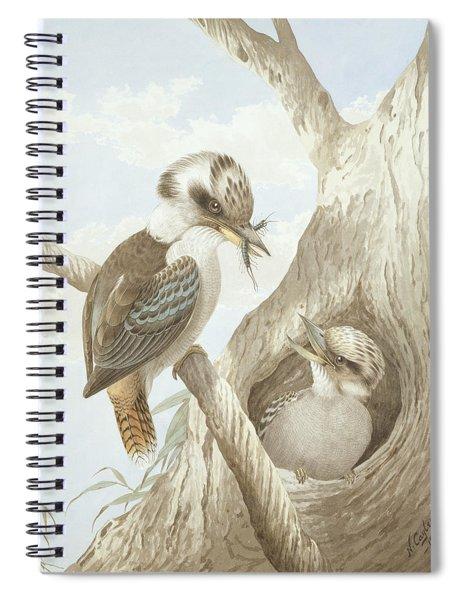 Kookaburras Feeding At A Nest Spiral Notebook