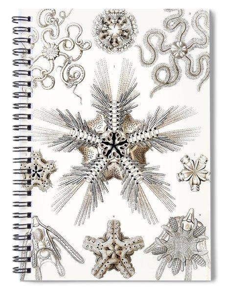 Kunstformen Der Natur Spiral Notebook