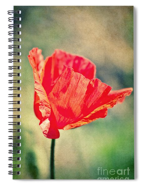 Lady In Red Spiral Notebook
