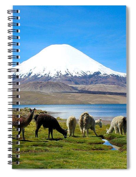 Lake Chungara Chilean Andes Spiral Notebook