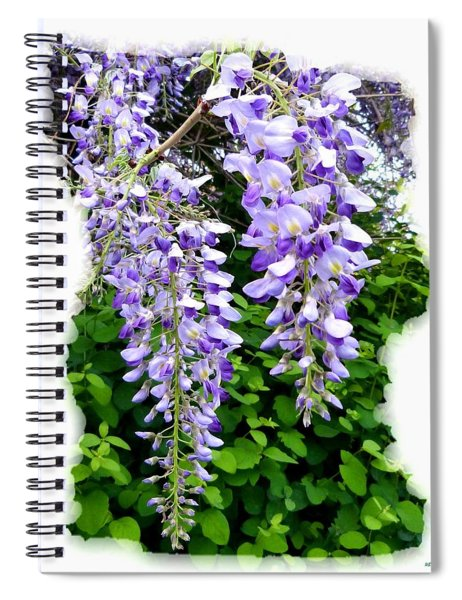Lake Country Wisteria Spiral Notebook
