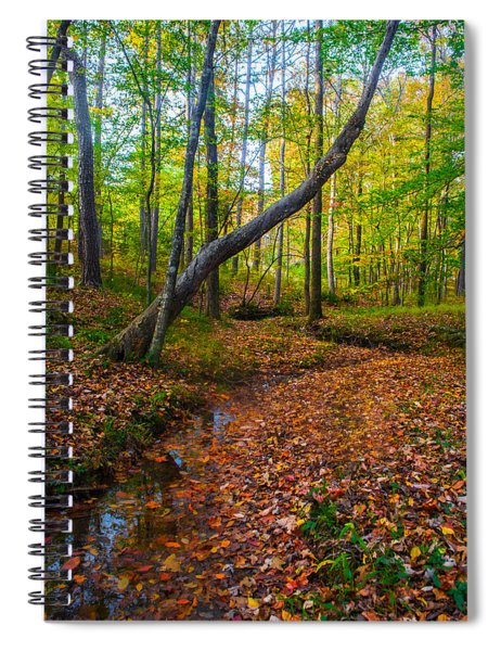 Land Of The Fairies Spiral Notebook