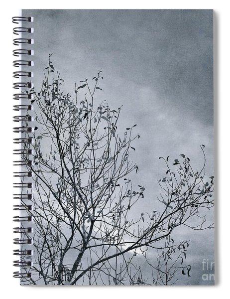 Land Shapes 16 Spiral Notebook by Priska Wettstein
