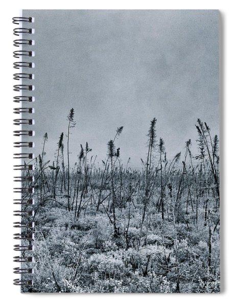 Land Shapes 20 Spiral Notebook by Priska Wettstein