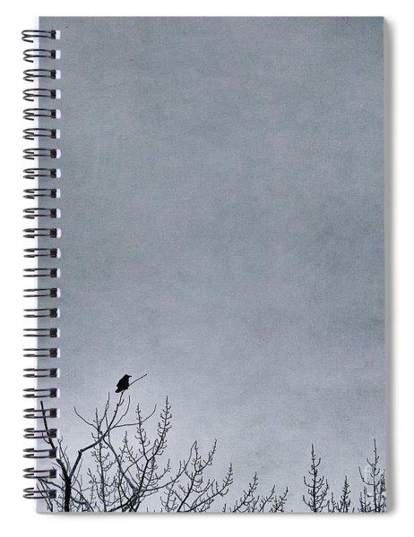 Land Shapes 8 Spiral Notebook