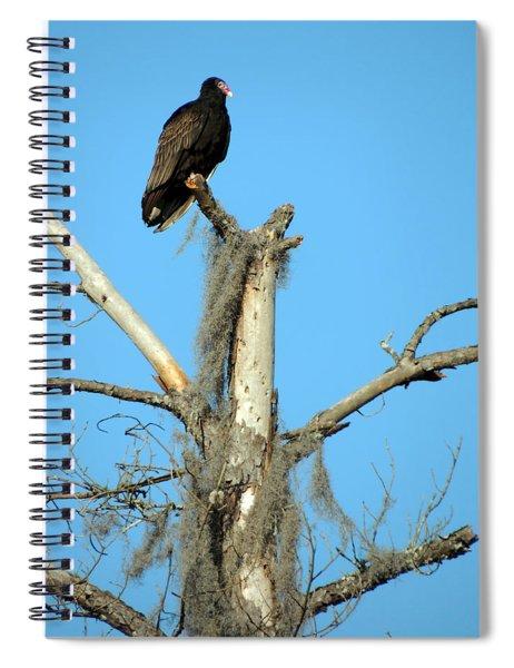 Larry Buzzard Vulture Spiral Notebook