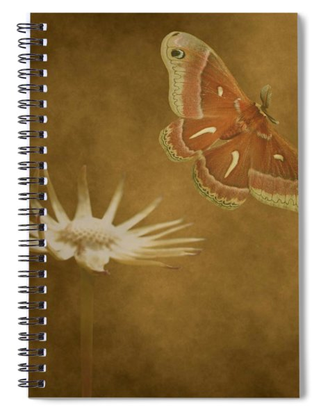 Last Flight Spiral Notebook