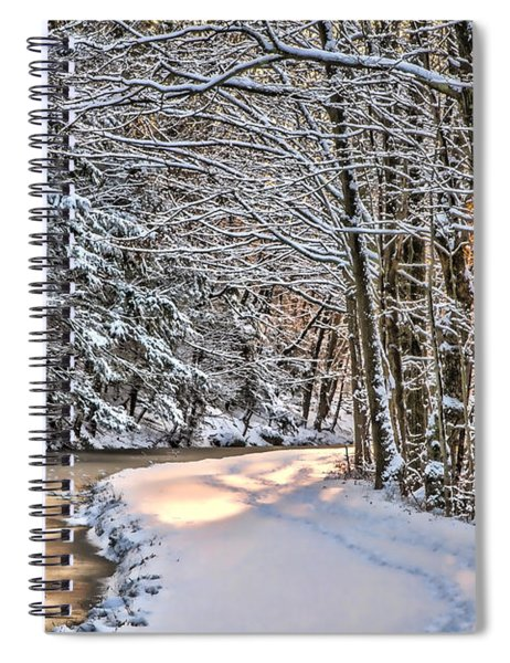 Late Afternoon In The Snow Spiral Notebook