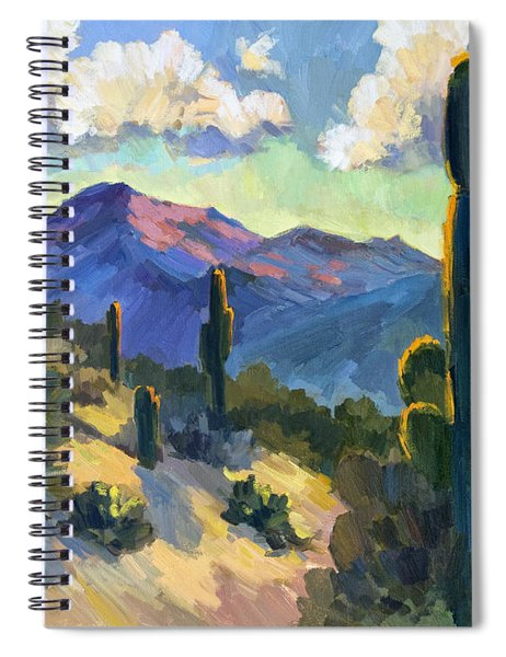 Late Afternoon Tucson Spiral Notebook