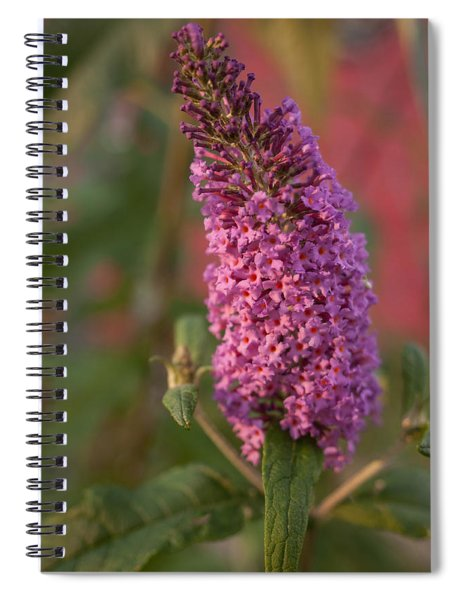 Late Summer Wildflowers Spiral Notebook