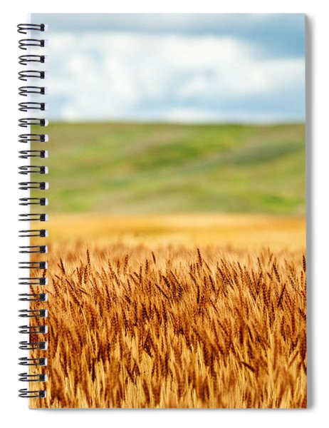 Layers Of Grain Spiral Notebook