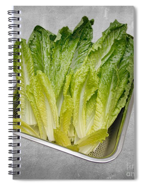Leaf Lettuce Spiral Notebook