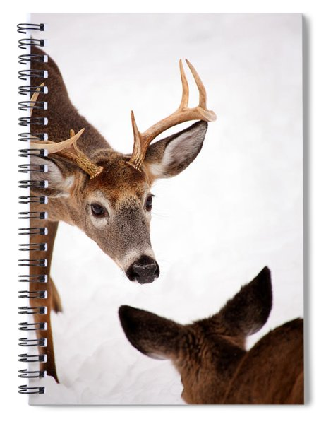 Learning A Lesson Spiral Notebook