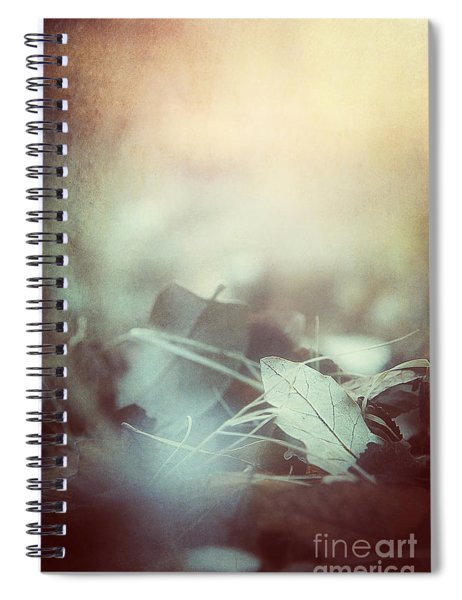 Leaves Of Time  Spiral Notebook
