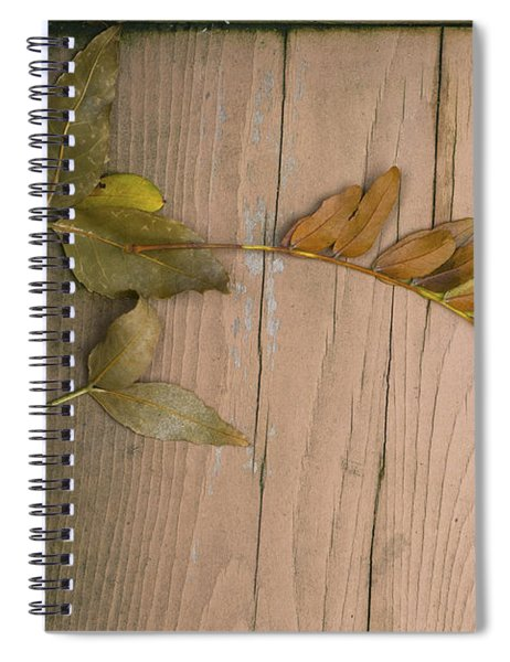 Leaves On A Wooden Step Spiral Notebook