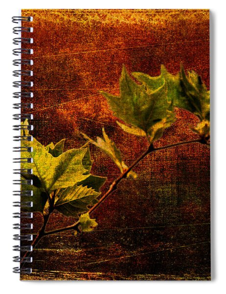 Leaves On Texture Spiral Notebook
