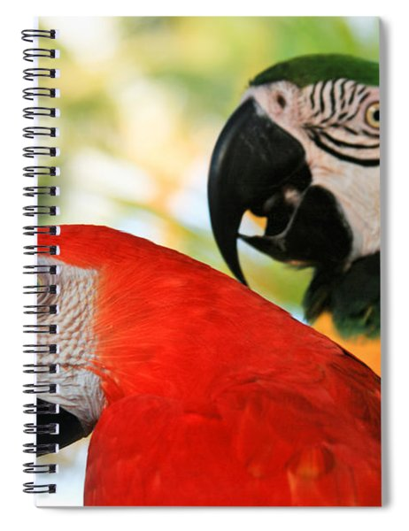 Lele Spiral Notebook