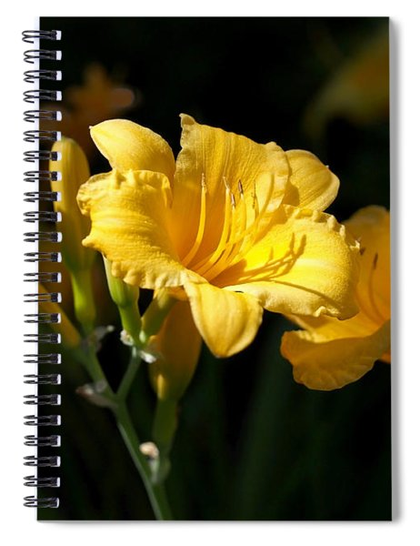 Lemon Yellow Daylilies Spiral Notebook