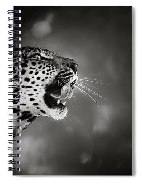 Leopard Portrait Spiral Notebook