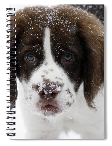 Lets Play Spiral Notebook
