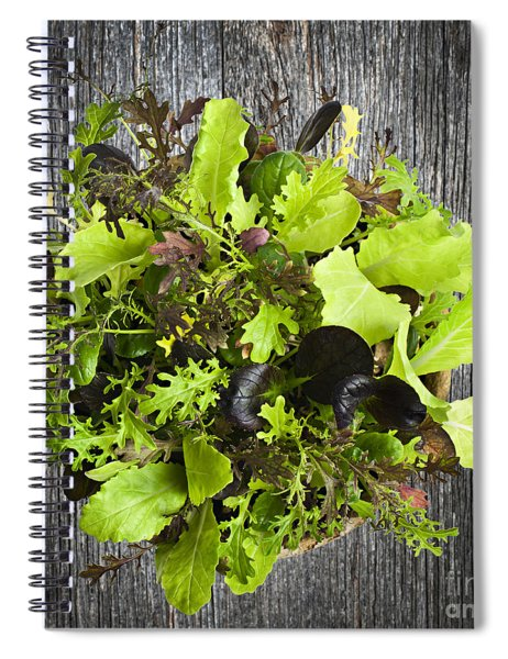Lettuce Seedlings Spiral Notebook