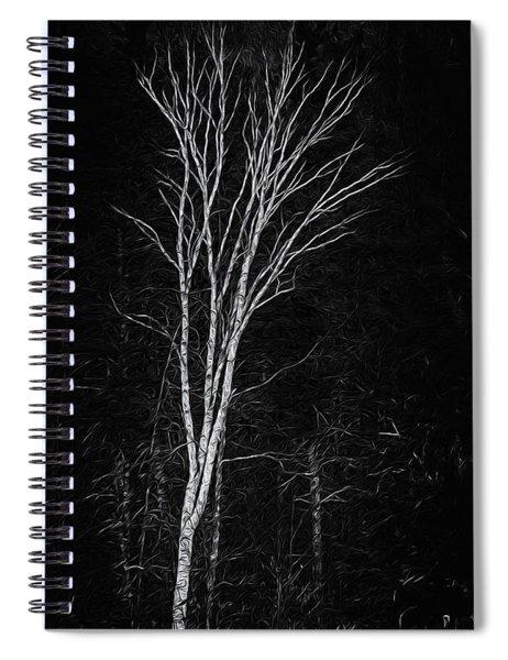 Life's A Birch No.2 Spiral Notebook