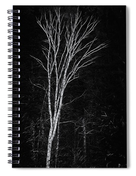 Life's A Birch No.2 Spiral Notebook