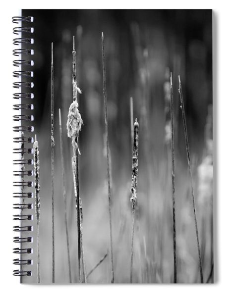 Life's Ripple - Center Spiral Notebook by Steven Santamour