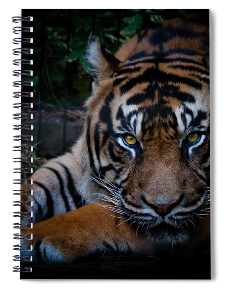 Spiral Notebook featuring the photograph Like My Eyes? by Robert L Jackson