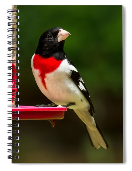 Like My New Suit? Spiral Notebook