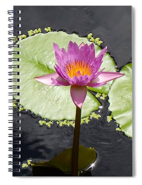 Lilly Lake Spiral Notebook