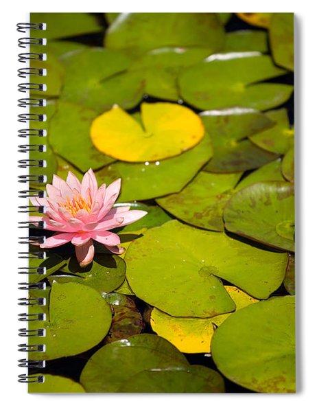 Lilly Pond Pink Spiral Notebook
