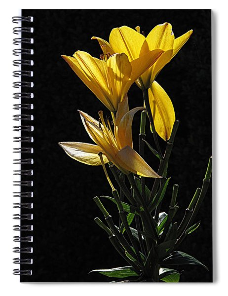 Lily Light Spiral Notebook