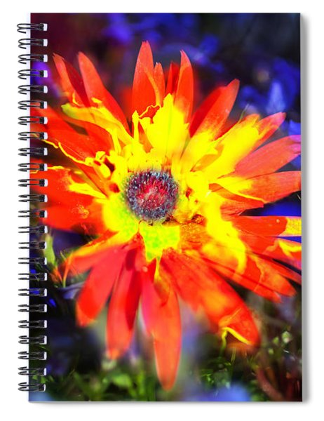 Lily In Vivd Colors Spiral Notebook