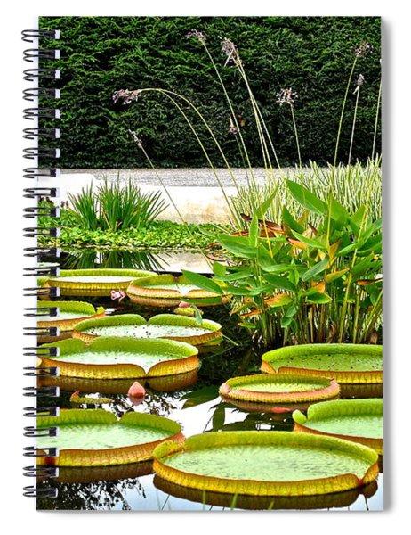 Lily Pad Garden Spiral Notebook