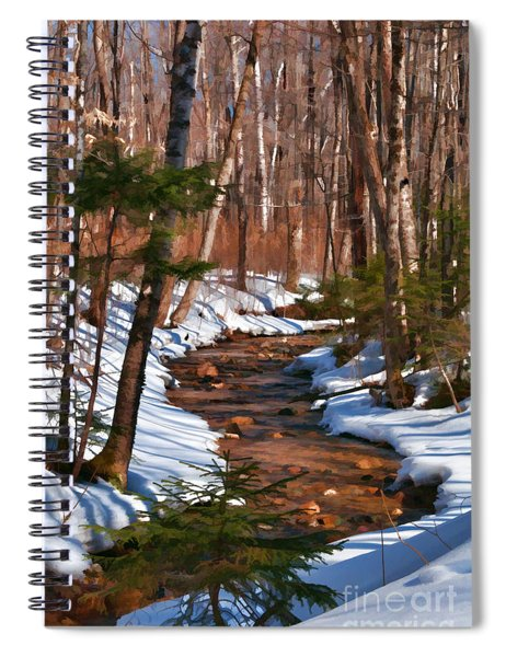 Lincoln Woods Trail Spiral Notebook