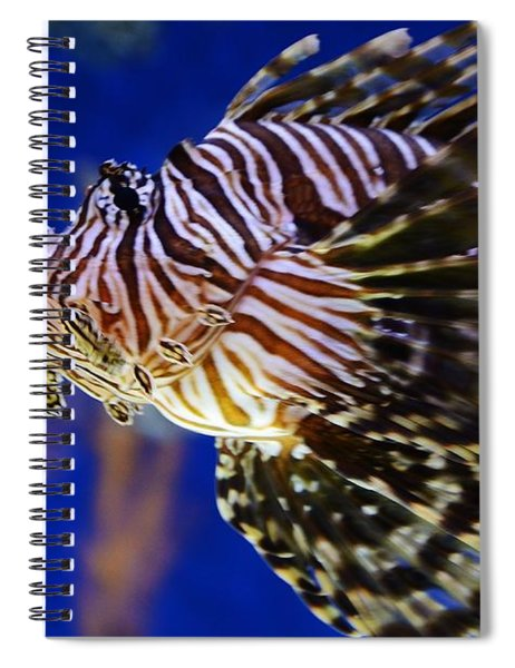 Lion Fish Spiral Notebook