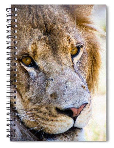 Lion Spiral Notebook