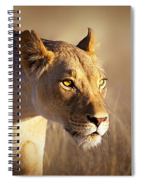 Lioness Portrait-1 Spiral Notebook