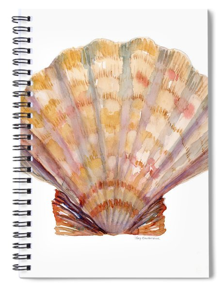 Lion's Paw Shell Spiral Notebook
