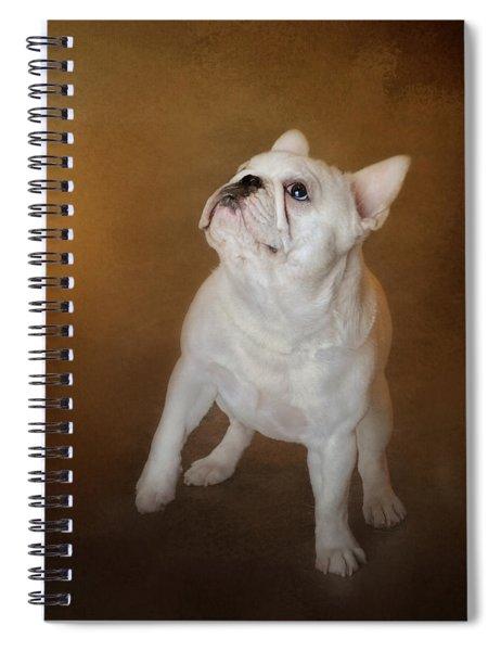Little Beggar - White French Bulldog Spiral Notebook