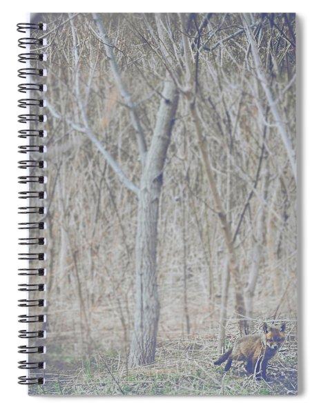 Little Fox In The Woods 2 Spiral Notebook