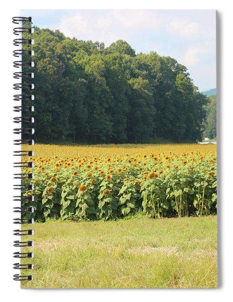 Little Girl And Big Sunflowers Spiral Notebook