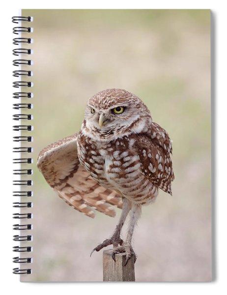 Little One Spiral Notebook