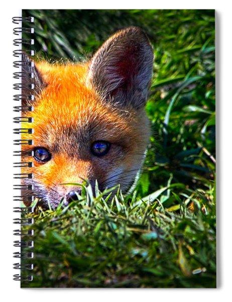 Little Red Fox Spiral Notebook
