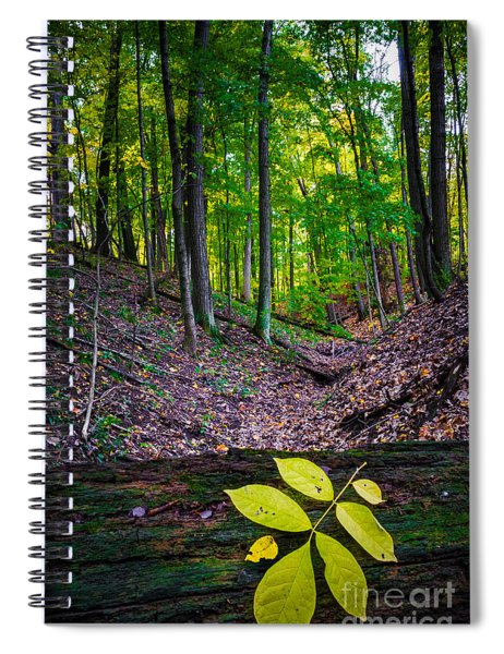 Little Valley Spiral Notebook