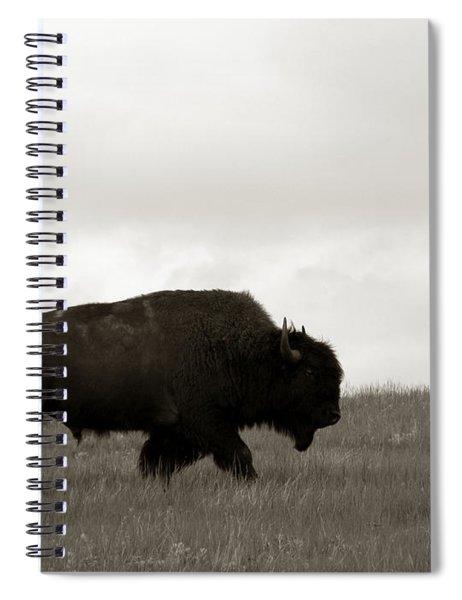 Lone Bison Spiral Notebook
